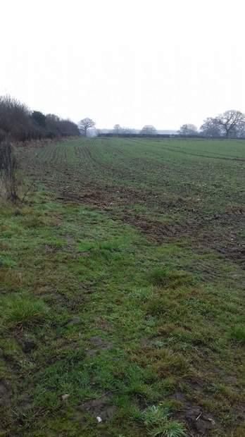 Paddock Land - Lot 1, Thorney Lanes, Hoar Cross, Burton on Trent - Image 2