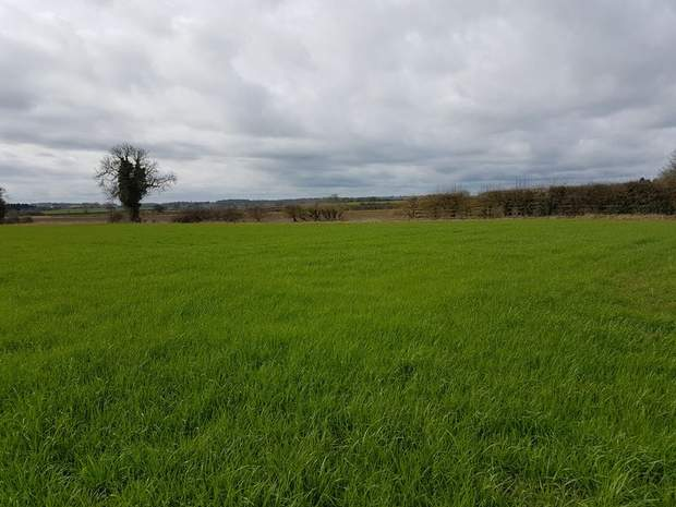 Land Off, Orton Road, Warton, Tamworth - Image 2