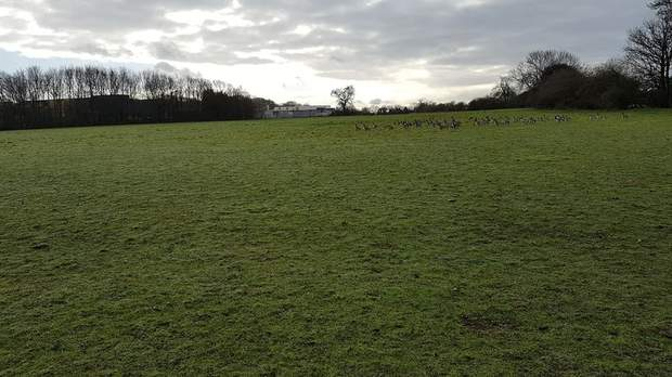 Lot 4 - Land at Bosty Lane, Daw End, Walsall - Image 4
