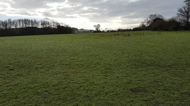 Lot 1 - Land at Bosty Lane, Daw End, Walsall - Image 4