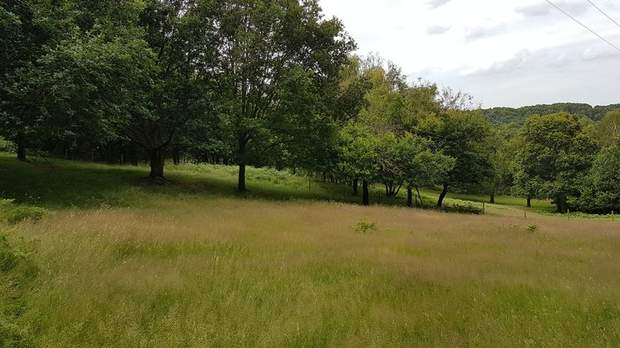 Land off Colliery Road, Startley Lane, Rugeley - Image 5
