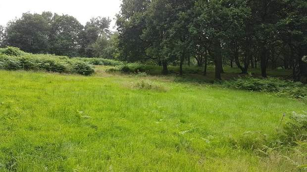 Land off Colliery Road, Startley Lane, Rugeley - Image 6
