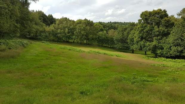 Land off Colliery Road, Startley Lane, Rugeley - Image 7