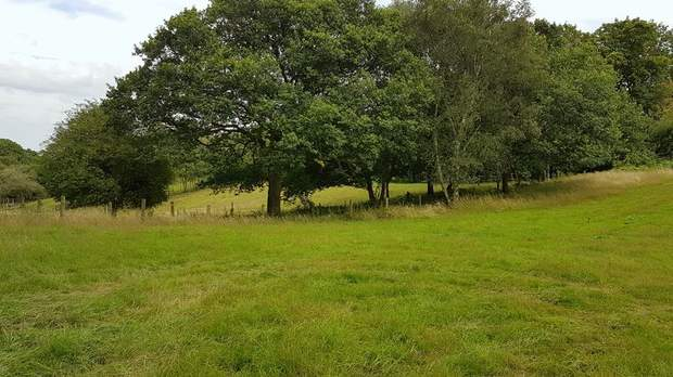 Land off Colliery Road, Startley Lane, Rugeley - Image 8