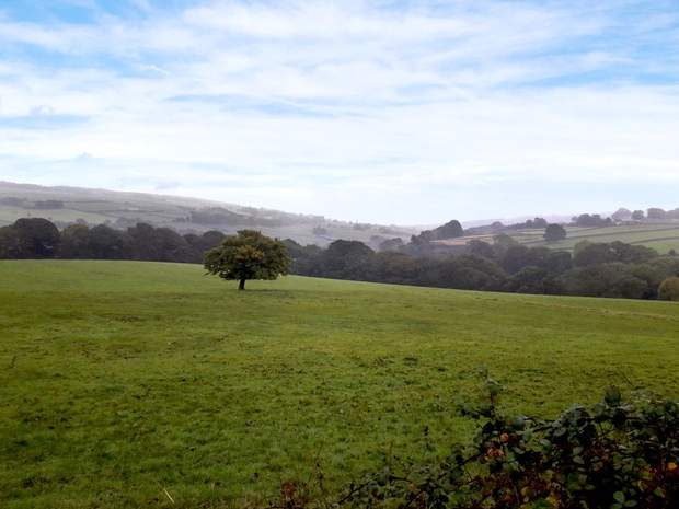 Lot 2 , Land at Dungworth Green, Bradfield, Sheffield - Image 1