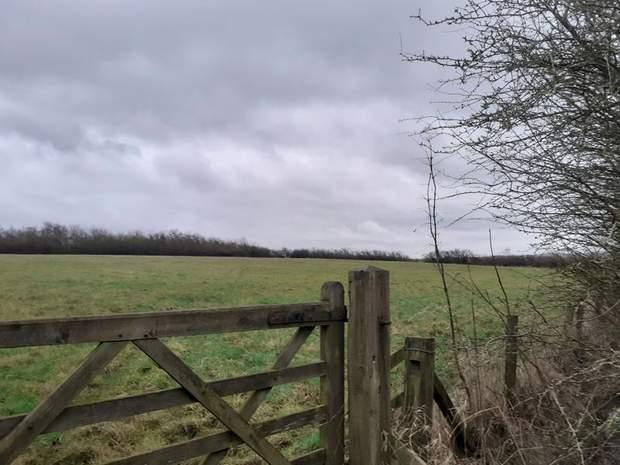 Lot One: 5.01 acres, Land off Street Lane, Denby, Ripley - Image 2