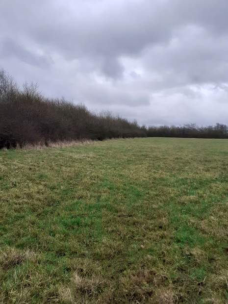 Lot One: 5.01 acres, Land off Street Lane, Denby, Ripley - Image 3