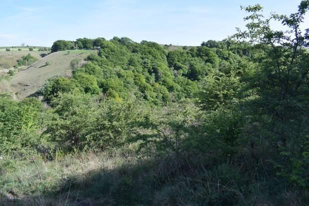 Land off Monsal Trail, Blackwell, Buxton - Image 4
