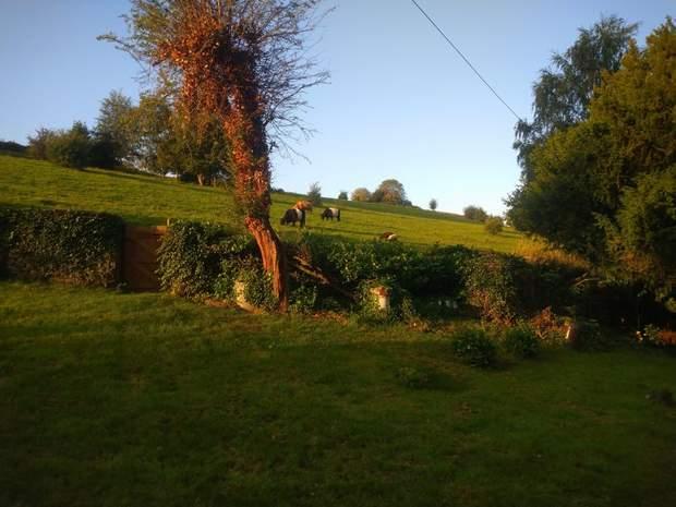 Bath House Farm, Nottingham Road, Belper - Image 17