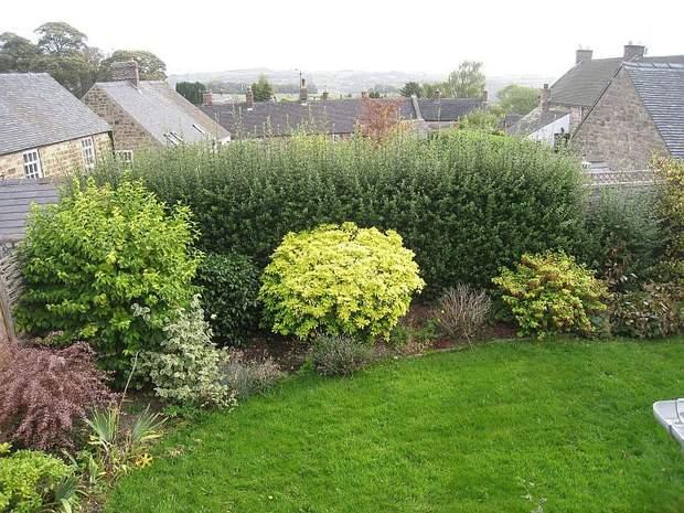 Barn Cottage, Kirk Ireton, Ashbourne - Image 4