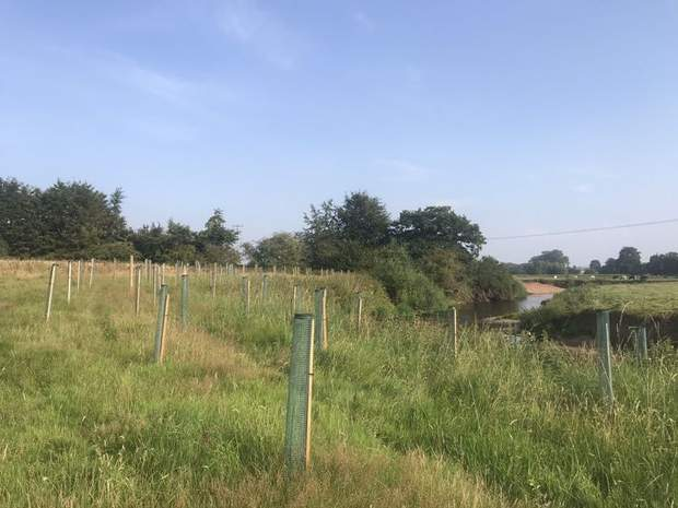 Land off Weston Bank , Stafford Road, Stafford  - Image 8