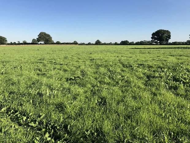 Land off Rowley Park Road, Hadley End, Yoxall, Burton-On-Trent - Image 3