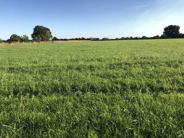 Lot 1 - Land off Rowley Park Road, Hadley End, Yoxall, Burton-On-Trent - Image 2