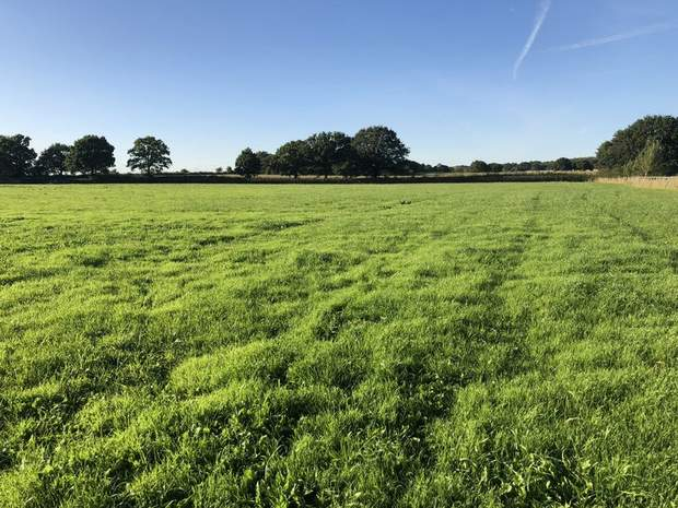 Land off Rowley Park Road, Hadley End, Yoxall, Burton-On-Trent - Image 4