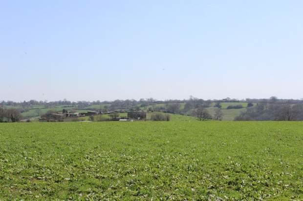 Lot 1 - Land at Cotwalton, Cotwalton, Stone - Image 1