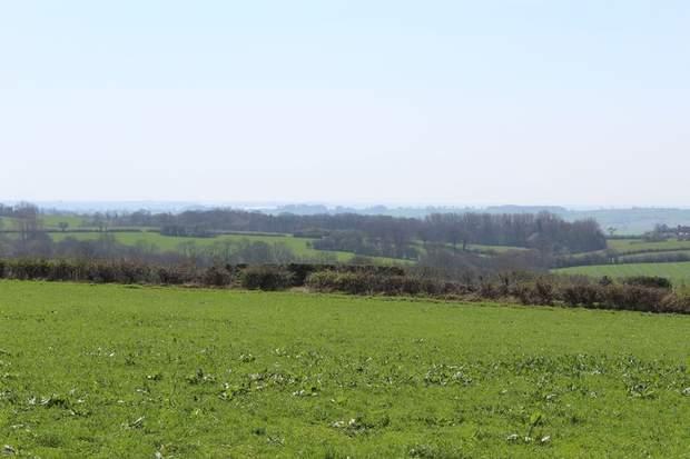 Lot 1 - Land at Cotwalton, Cotwalton, Stone - Image 2