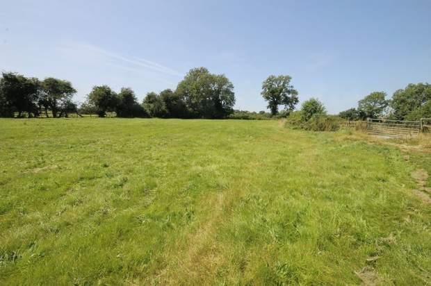 Lot 1 - Wesleigh Farm, Ashflats Lane, Stafford - Image 19