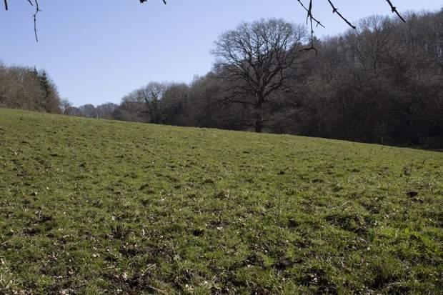 Land off Chesterfield Road, Oakerthorpe, Alfreton - Image 6