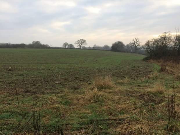 Paddock Land - Lot 1, Thorney Lanes, Hoar Cross, Burton on Trent - Image 3