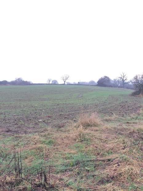 Paddock Land - Lot 1, Thorney Lanes, Hoar Cross, Burton on Trent - Image 4