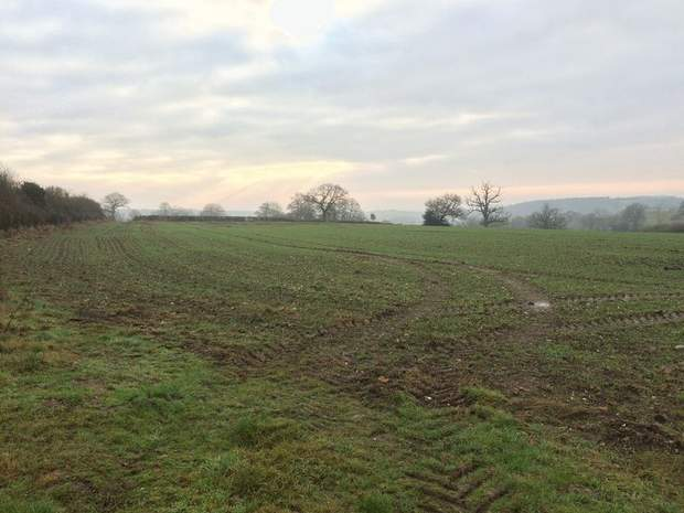 Paddock Land - Lot 1, Thorney Lanes, Hoar Cross, Burton on Trent - Image 1