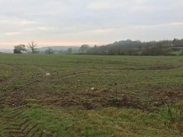 Paddock Land - Lot 1, Thorney Lanes, Hoar Cross, Burton on Trent - Image 5