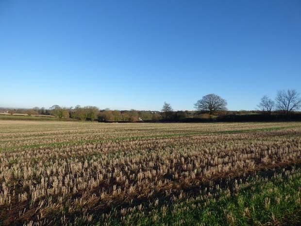 Land off Renishaw Road, Beighton Fields, Renishaw, Sheffield - Image 3