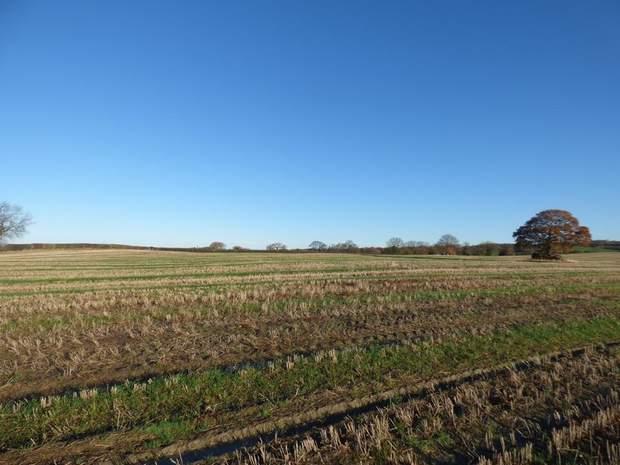 Land off Renishaw Road, Beighton Fields, Renishaw, Sheffield - Image 2