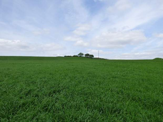 Land at Troway, Marsh Lane, Sheffield - Image 1