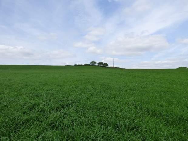 Land at Troway, Marsh Lane, Sheffield - Image 1