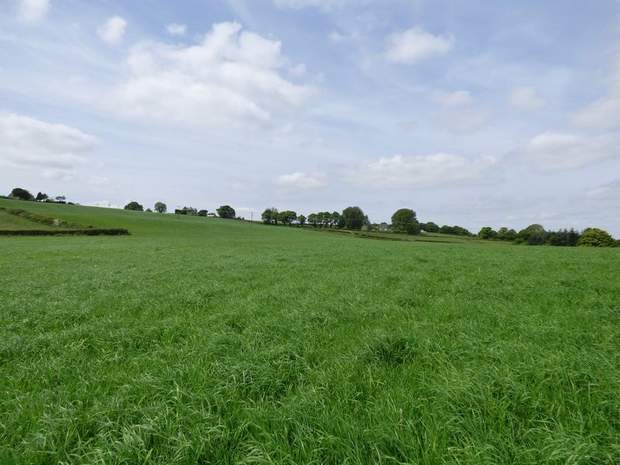 Land at Troway, Marsh Lane, Sheffield - Image 3