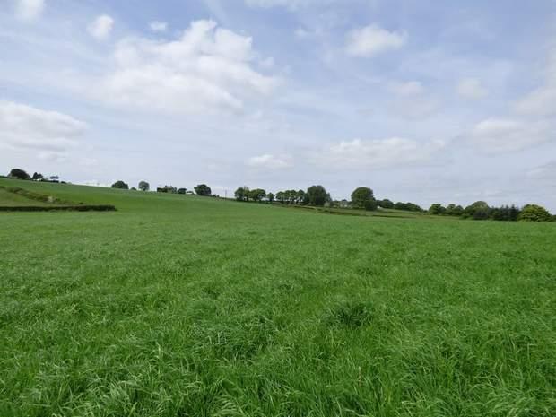 Land at Troway, Marsh Lane, Sheffield - Image 3