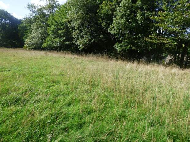 Residential Development Site , off Lesser Lane, Fairfield, Buxton - Image 2