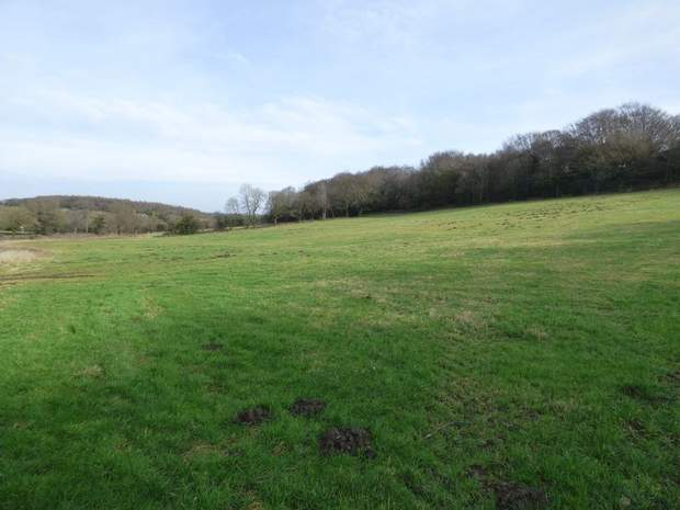 Land and Woodland off Ashover Road, Alton, Chesterfield - Image 1