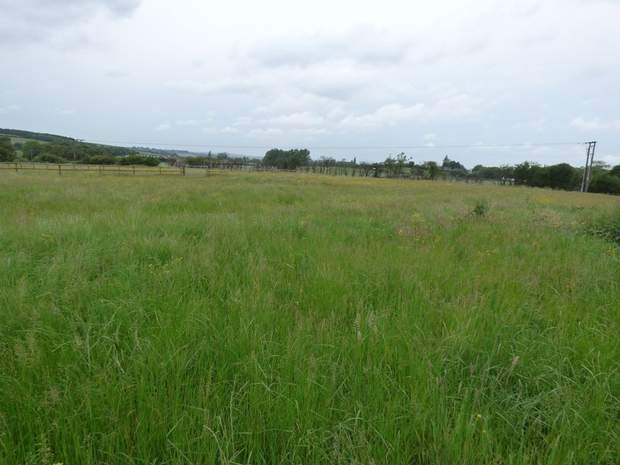Land off Hilcote Lane, Hilcote, Alfreton - Image 4