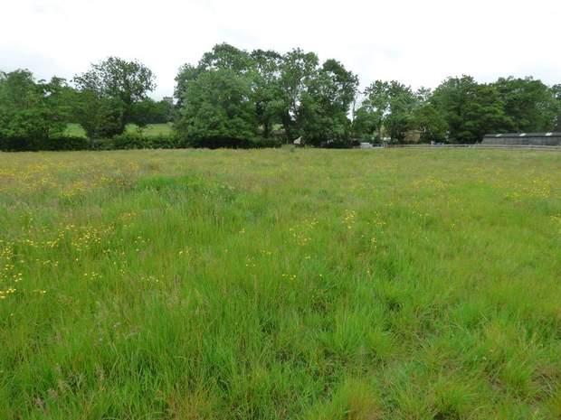 Land off Hilcote Lane, Hilcote, Alfreton - Image 5