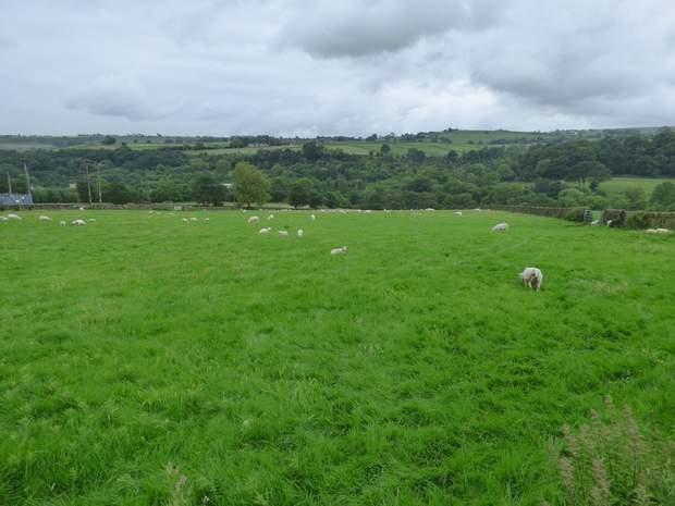 Lot 1 - Stacey Bank Farm, Stacey Bank, Loxley, Sheffield - Image 18