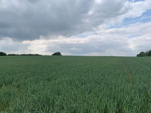 Land off Stafford Road, Lichfield - Image 3
