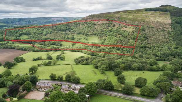 Land off Carr Lane, Thornhill, Bamford, Hope Valley - Image 4