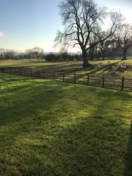 Redmorlea Farmhouse, Winkhill, Leek - Image 13
