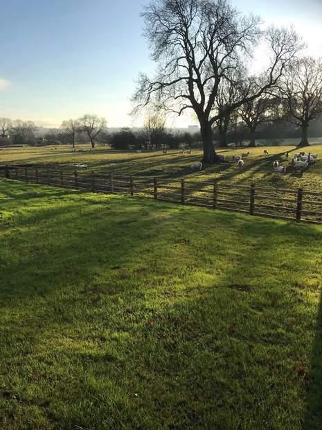 Redmorlea Farmhouse, Winkhill, Leek - Image 15